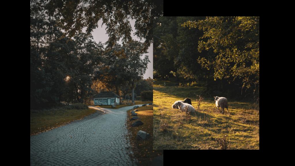 Wanderung auf Hiddensee im Herbst, Abendstimmung in Kloster