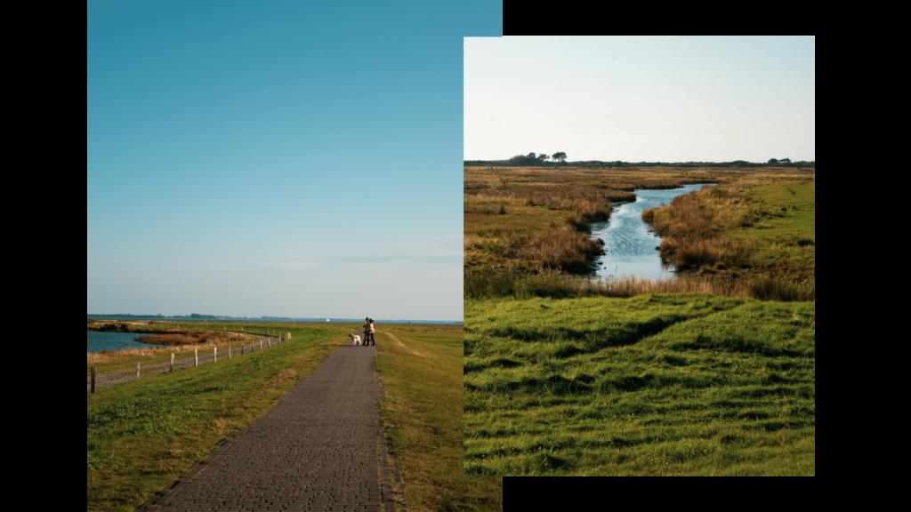 Wanderung auf Hiddensee im Herbst über die Salzwiesen